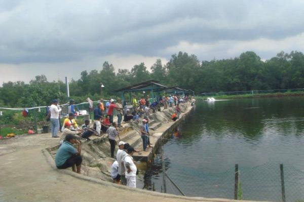 Brother fishing pond leisure johor bahru travelmalaysia for Koi pond johor bahru